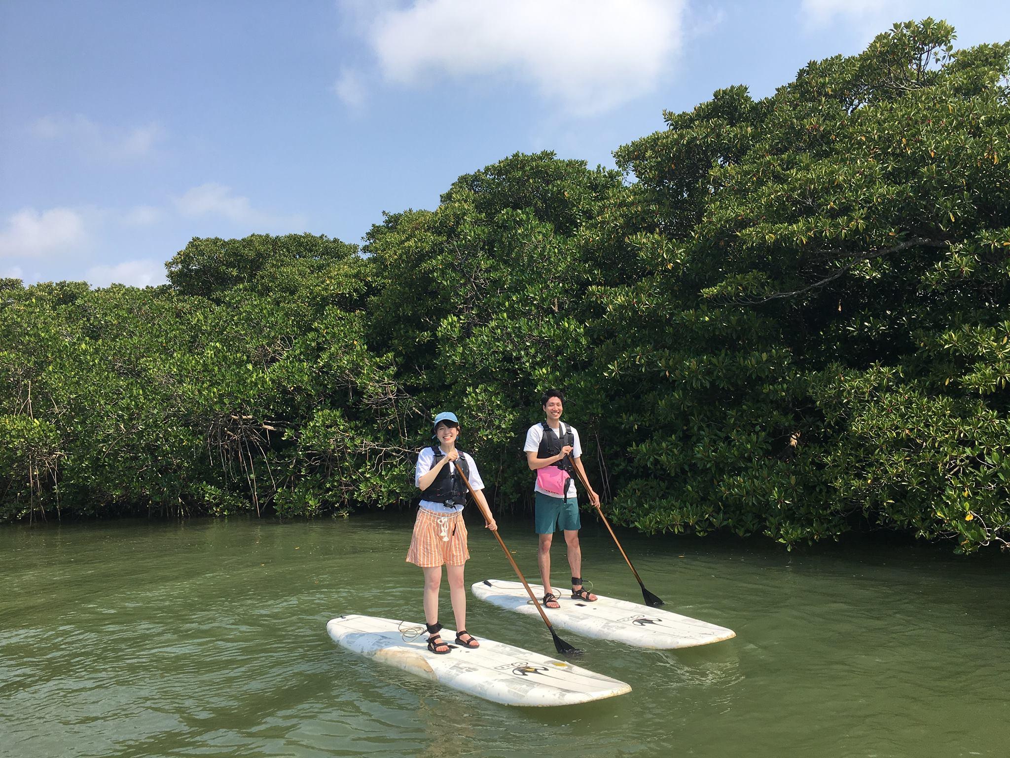 穏やかな川で石垣島のマングローブSUP