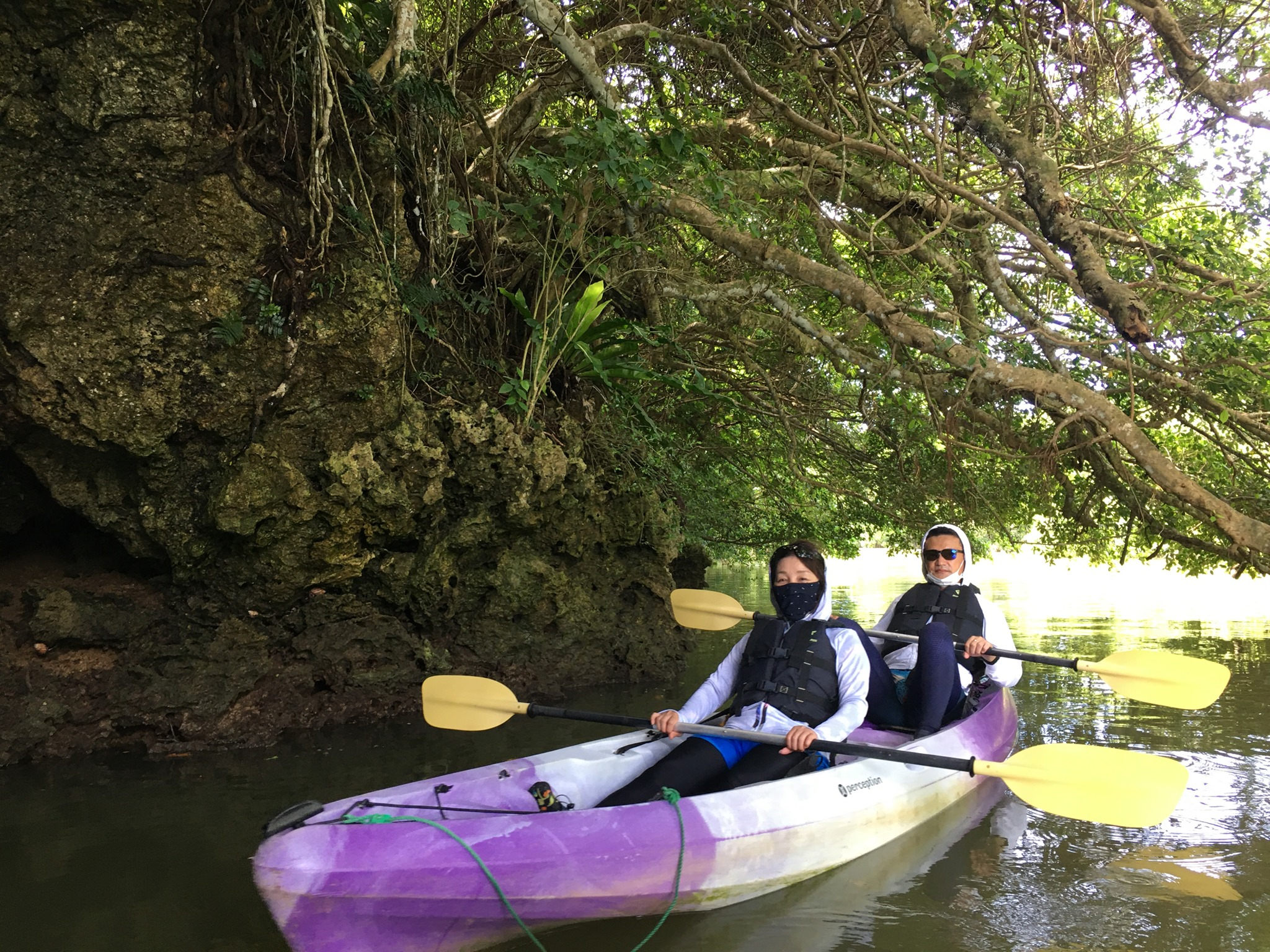 ガジュマルとカヌー 石垣島で旅行