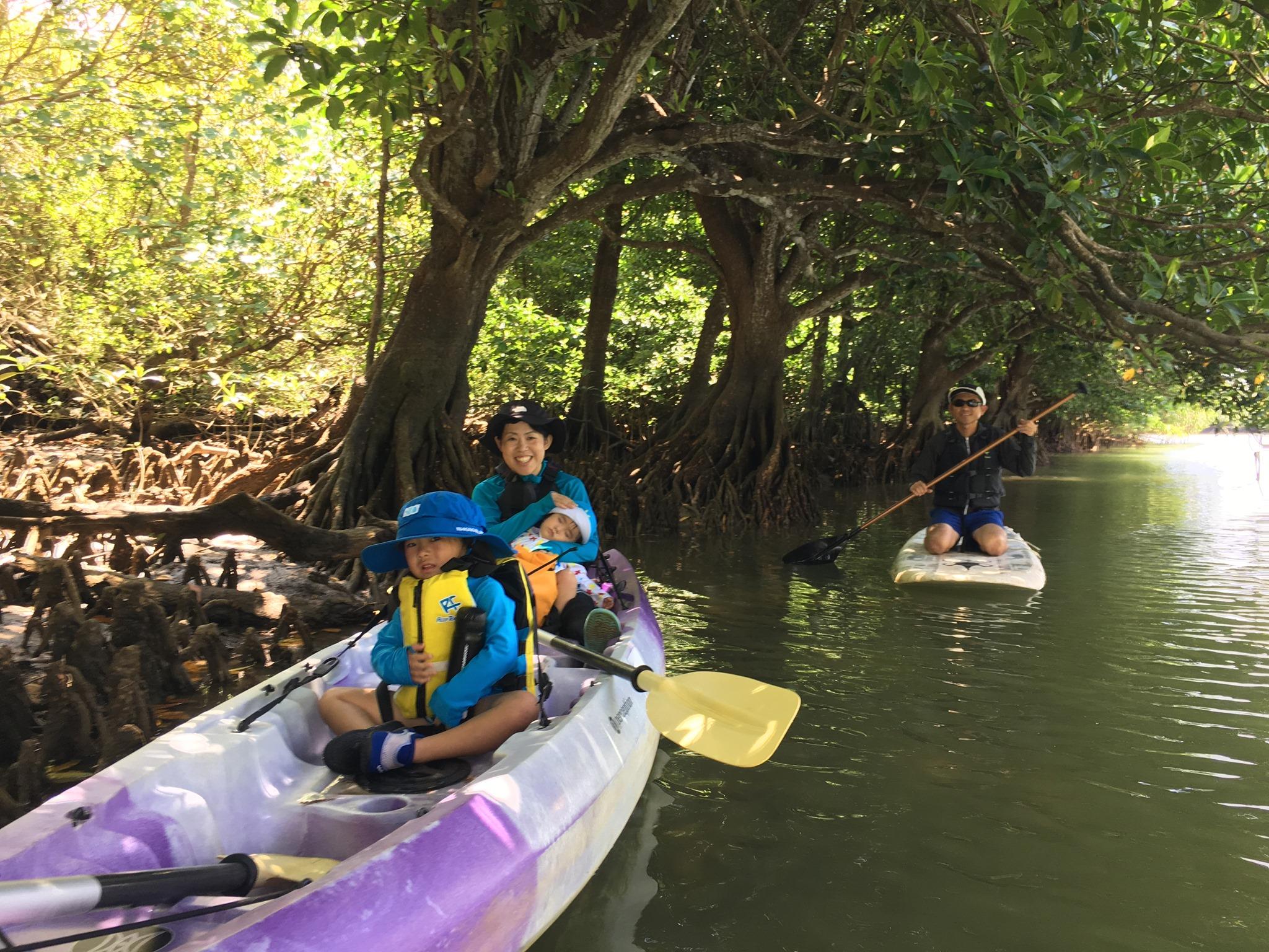 マングローブカヌー&SUP|石垣島のマングローブの中で