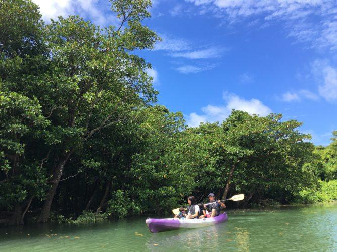 石垣島の青空とマングローブ|カヌーに揺られて