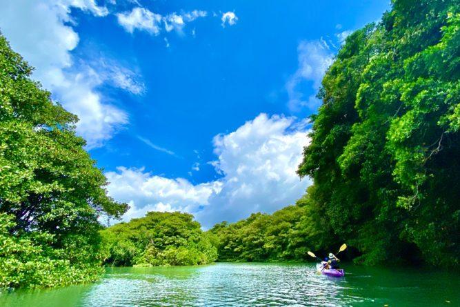 石垣島のマングローブカヌーでゲストが撮ってくれた写真1