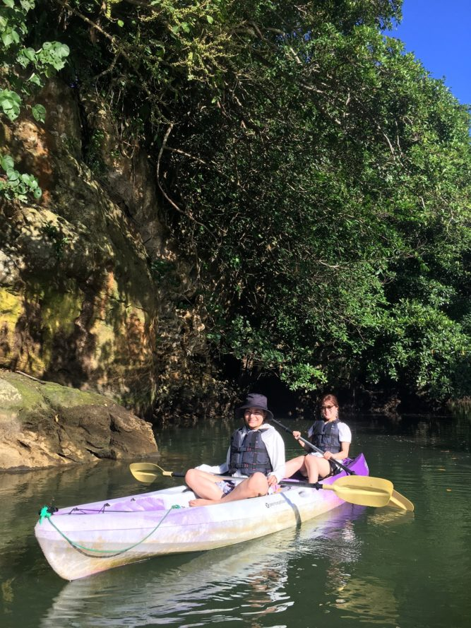 大自然を満喫できるマングローブカヌー