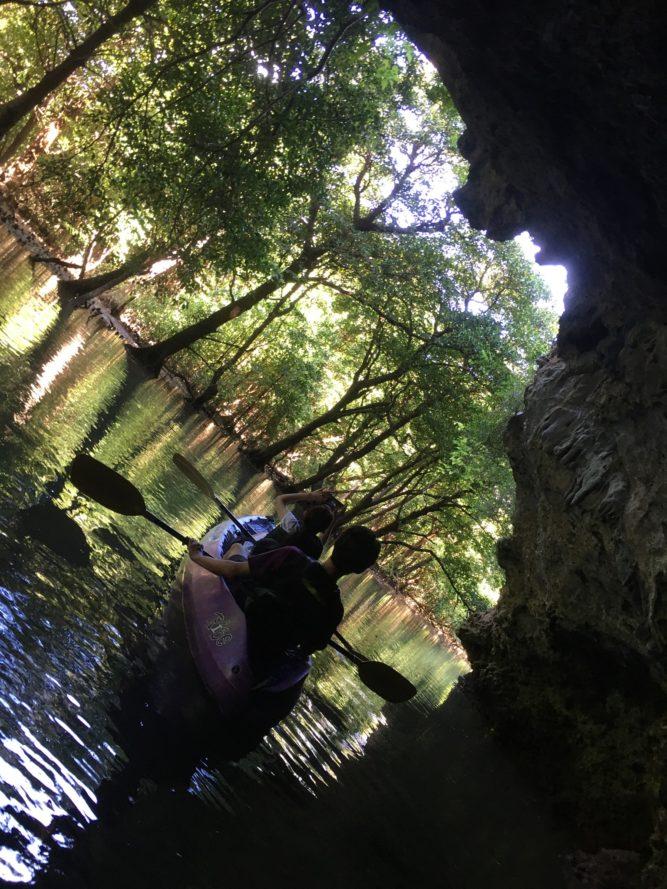 カヌーとマングローブと石垣島の洞窟