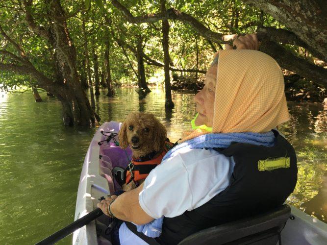 マングローブの木陰でワンコとカヌーに乘って休憩