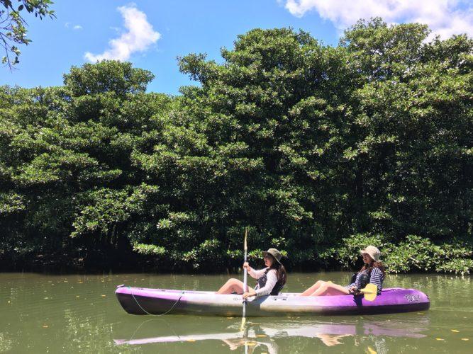 石垣島の秘境へ、マングローブカヌー