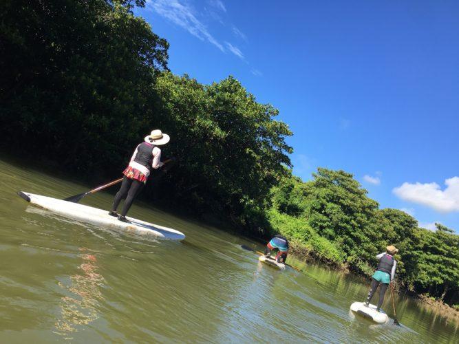 のんびり石垣島でマングローブSUP
