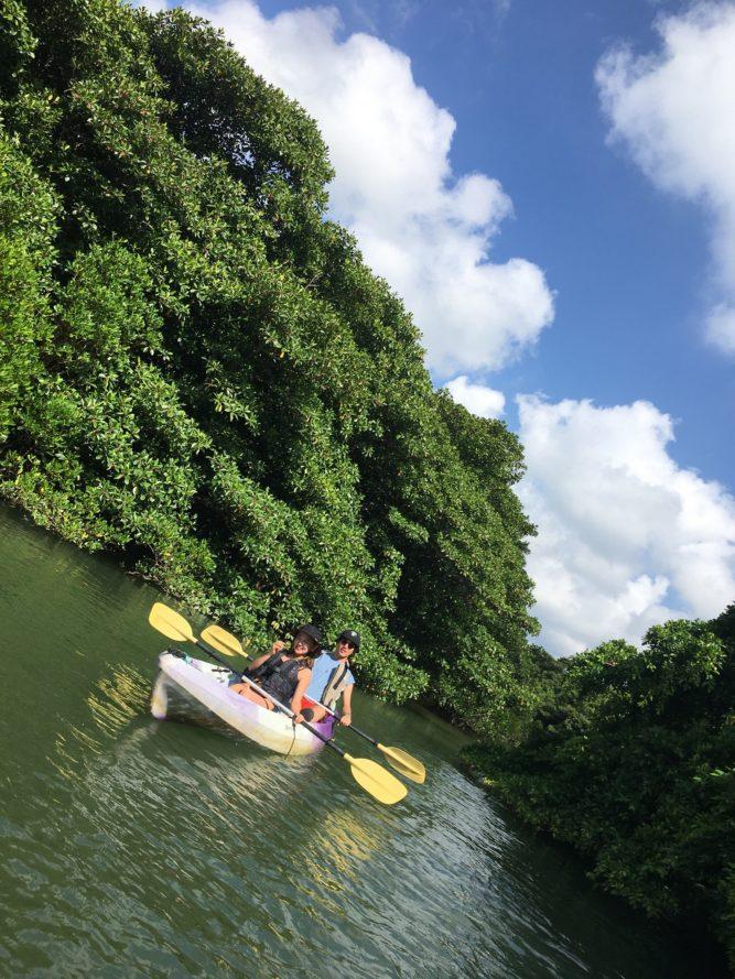 青空のマングローブカヌー|石垣島のアクティビティ