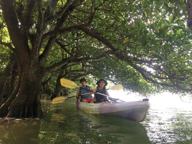 石垣島のマングローブの中でカヌーに乘って小休止