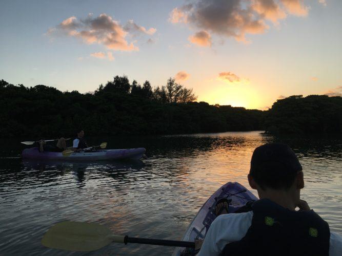 夕闇のマングローブ 石垣島のアクティビティ