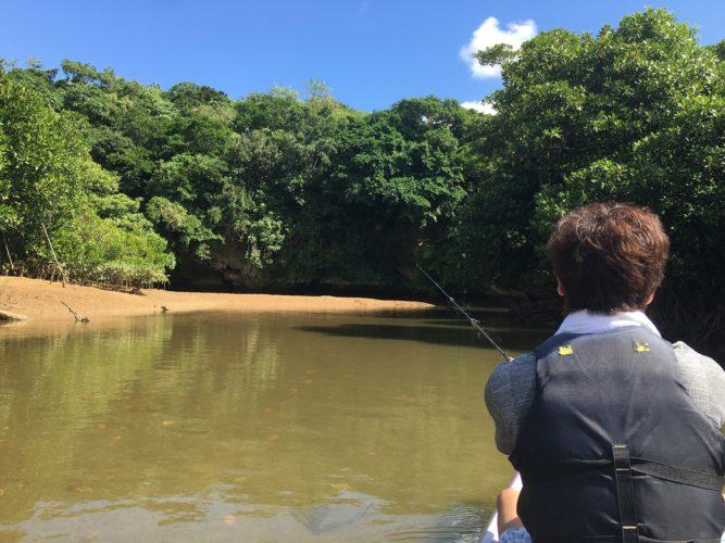 雄大なマングローブに囲まれてカヤック 石垣島ガイドCHORO
