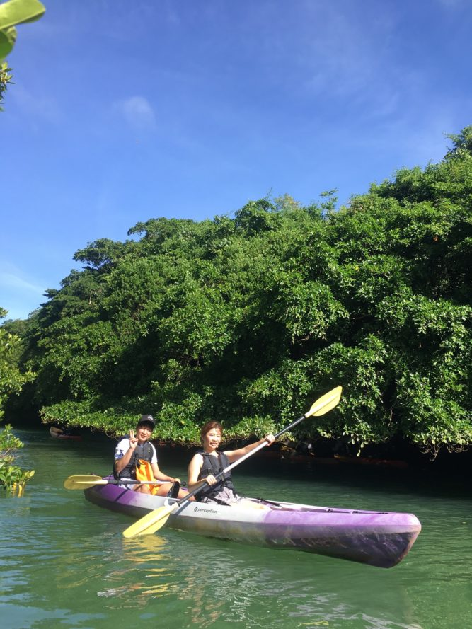 マングローブカヌーで石垣島のマングローブ